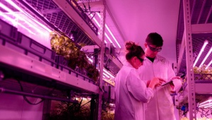 Aplicaciones Luz Ultravioleta Germicida UV-C